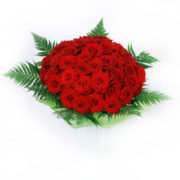 roses_red_51